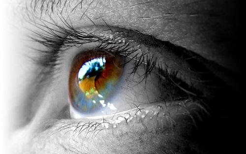 حساسیت چشم، پیشگیری و درمان